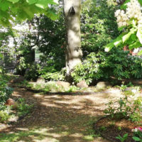 Friedhof Hartha - Naturnahe Baumbestattung